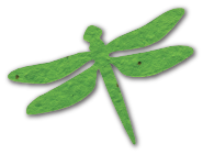 Dragonfly, MVS-34