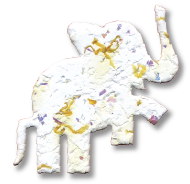 Elephant, OR-L-48B, Daisy