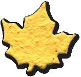Maple leaf, OR-M-55, Wildflower seeds