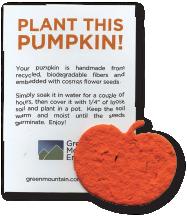 Pumpkin, OR-M-69, wildflower seeds