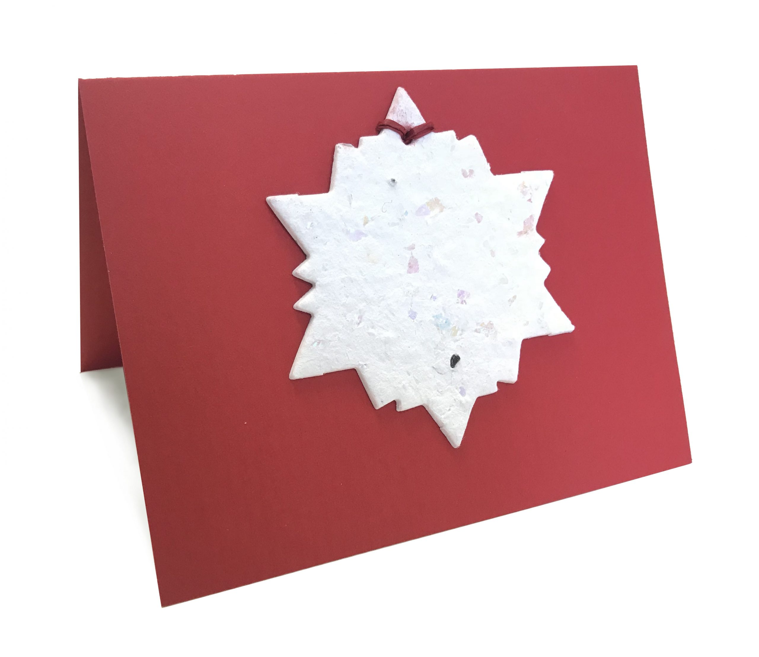 Premium Ornament Cards
